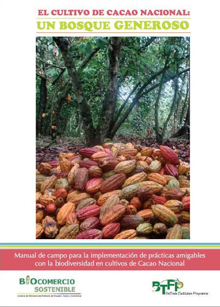 El cultivo de cacao nacional